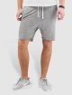 Sublevel Shorts Lewin grigio 0
