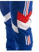 adidas originals Jogginghose Aloxe Tp blau 3