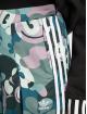 adidas Originals Sweat Pant Contemp Bb colored