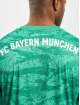 adidas Performance Langermet FC Bayern Home Goalkeeper grøn