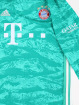 adidas Performance T-Shirt FC Bayern Home green