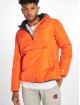 Champion Winterjacke Hooded orange