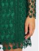 Danity Paris Robe Jolinde vert 2