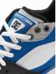 DC Zapatillas de deporte Maswell azul