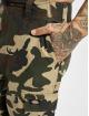 Dickies Cargo pants Eagle Bend kamouflage