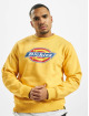 Dickies Swetry Pittsburgh zólty