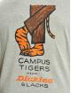 Dickies T-Shirt Schriever grau