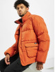 Dickies Winter Jacket Olaton brown