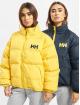 Helly Hansen Zimné bundy Urban Reversible žltá