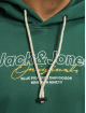 Jack & Jones Bluzy z kapturem jorExpanded zielony