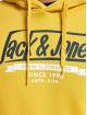 Jack & Jones Hoody jjeLogo Noos Sweat geel