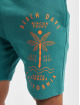 Just Rhyse Short Carara turquoise