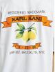 Karl Kani t-shirt Small Signature wit