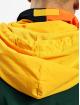 Karl Kani Transitional Jackets Retro Block grøn