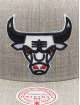 Mitchell & Ness Кепка с застёжкой Team Heather HWC Chicago Bulls серый