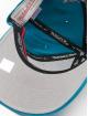 Mitchell & Ness Casquette Snapback & Strapback Team Ground Charlotte Hornets Stretch vert