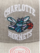 Mitchell & Ness Snapback Cap Team Heather HWC Charlotte Hornets grau