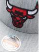 Mitchell & Ness Snapback Cap Team Heather Chicago Bulls Stretch grau