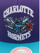 Mitchell & Ness Snapback Cap Wool 2 Tone HWC Charlotte Hornets viola