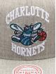 Mitchell & Ness Snapback Caps Team Heather HWC Charlotte Hornets šedá