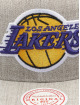 Mitchell & Ness Snapback Caps Team Heather Los Angeles Lakers šedá