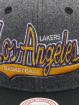 Mitchell & Ness Snapback Caps NBA Los Angeles Lakers HWC Melton COD szary