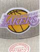 Mitchell & Ness Snapbackkeps Team Heather HWC Los Angeles Lakers grå