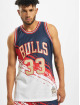 Mitchell & Ness Trikot Independence Swingman Chicago Bulls S. Pippen blå
