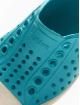Native Shoes Sneakers Jefferson Child modrá