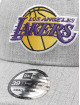 New Era Flexfitted Cap Heather 39Thirty LA Lakers grau