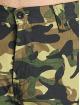 Pelle Pelle Shorts Basic Cargo camouflage