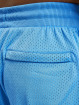 PUMA HOOPS Shorts Scholarship blau
