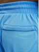 Puma Short Scholarship blue