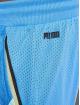 Puma Shorts Scholarship blau