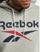 Reebok Hoody Identity French Terry OTH Big Logo grau