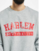 Southpole Pullover Harlem grau
