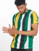 Southpole T-skjorter Vertical Block grøn 0