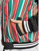 Southpole Teddy Stripe College multicolore