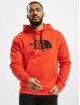 The North Face Hoody Drew Peak Plv rot
