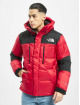 The North Face Puffer Jacket Orig Him rot 2