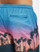 VSCT Clubwear Šortky Miami Palms pestrá