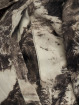 VSCT Clubwear Vinterjackor 3 Face Woodland grå 9
