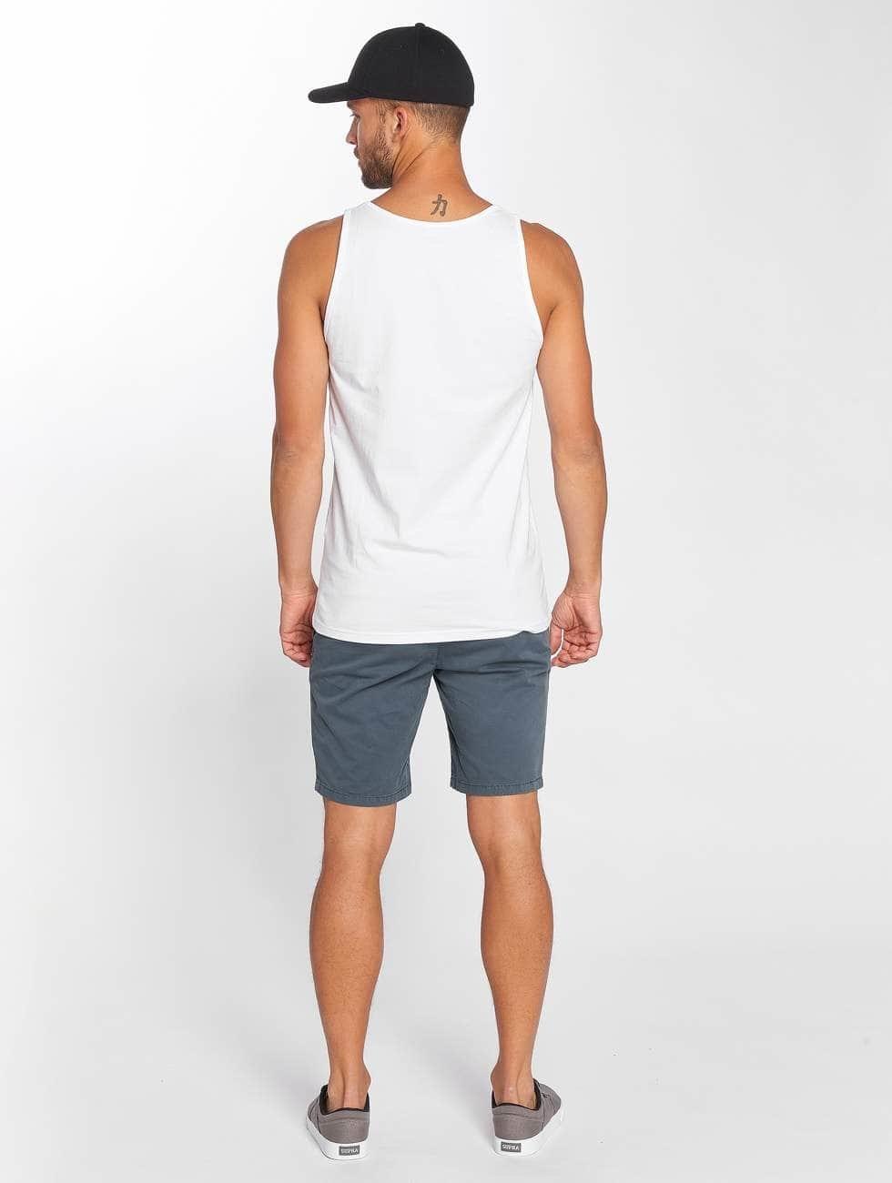 Superdry Shorts Sunscorched blå