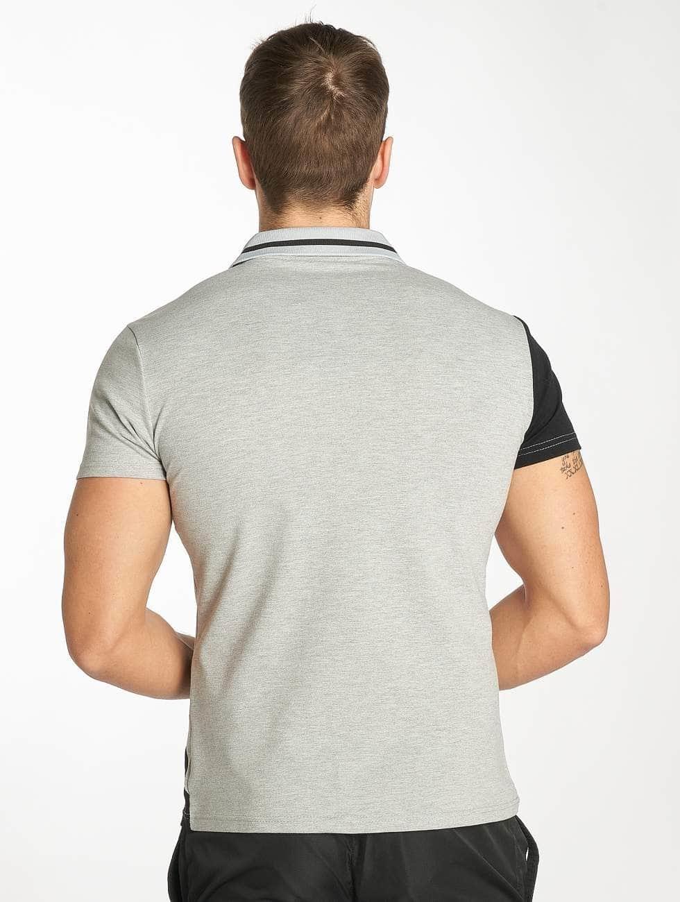 Zayne Paris Poloshirts Stripe grå