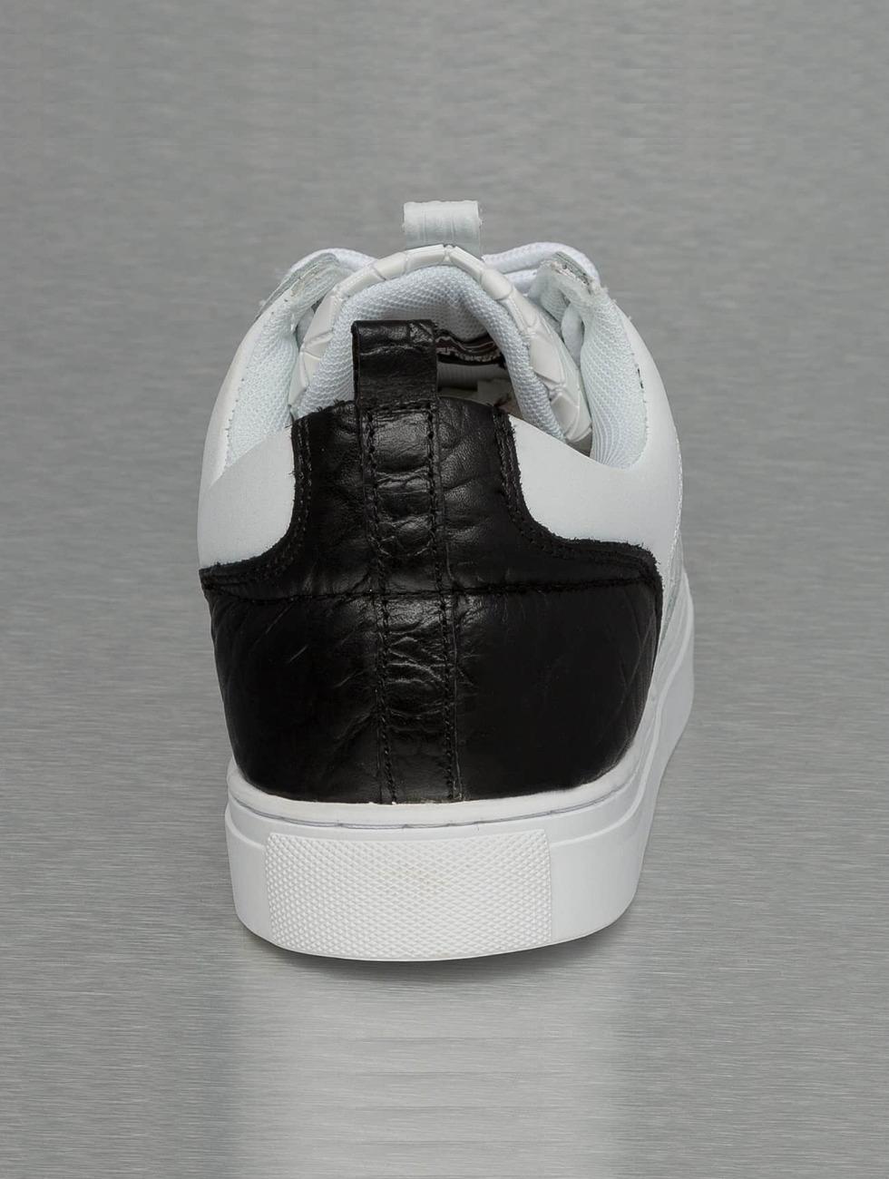 Djinns schoen / sneaker Forlow Rubber Croc in wit 301802 Lage Verzendkosten Goedkope Prijs Kies Een Best Outlet Prijzen Goedkope Koop Amazon po3IS