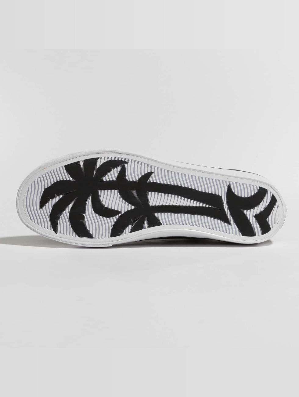 Erg Goedkoop Klaring Online Winkelen Project Delray schoen / sneaker C8ptown in zwart 455313 Goedkope Koop Lage Prijs Wlpu70WE