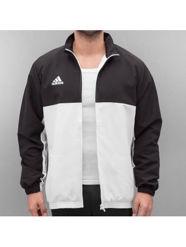 adidas Boxing MMA Herren Übergangsjacke T16 Team in schwarz