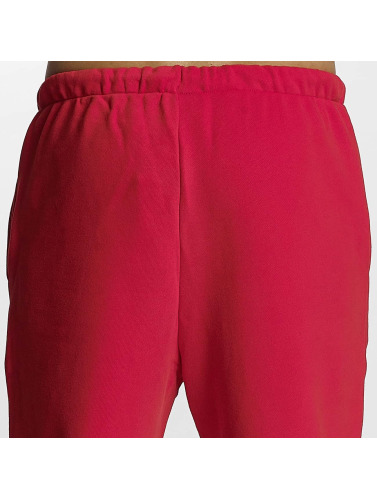 adidas originals Herren Jogginghose Anichkov in rot