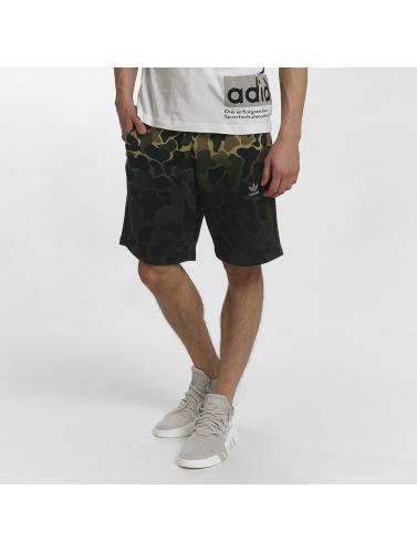 adidas originals Herren Shorts Camo in camouflage