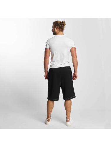 adidas originals Herren Shorts Alder in schwarz